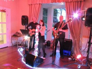 acoustic wedding band Devon